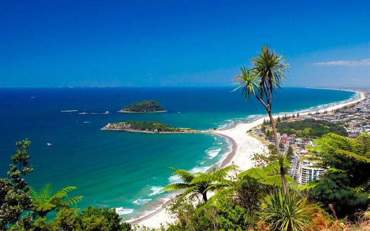 view top mt - Adventures WanderlustNZ Hostel Tauranga.jpg